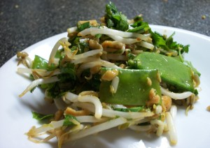 Raw Thai Salad